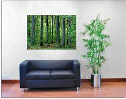 wall murals the print is of a unique high quality and rich in wall murals the print is of a unique high quality and rich in detail very sturdy print can be used everywhere due to thicker paper gallery