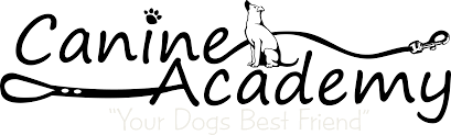 canine academy therapy dog testing