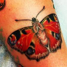 butterfly tattoos and designs page 501