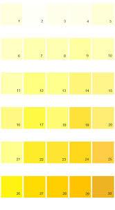 light yellow paint colors pale yellow paint colors home design yellow paint colors bayleaf