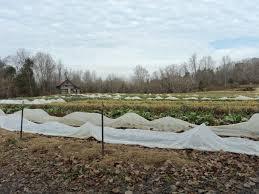pam u0027s blog sustainable market farming intensive vegetable