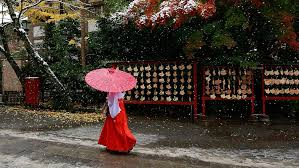 november tokyo 13 beautiful photos of the first november tokyo snow since 1962