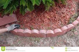 man placing red concrete landscape edging stock image image