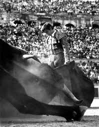 paramount matador lucien clergue bull fighting black and white lucien clergue