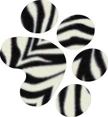 picture coloring book zebra coloring pagesuper coloring