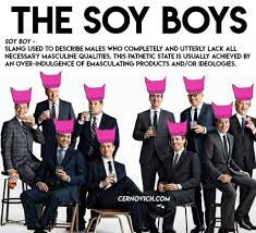 Pajama Boy Meme - how soy boy became the far right s favorite new insult