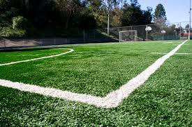 triyae com u003d backyard turf field various design inspiration for