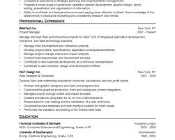 Resume Samples Basic by 100 Powerful Resume Samples Outstanding Cover Letter Examples