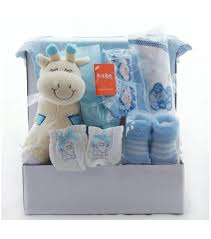 baby gift baskets delivered giraffe baby gift basket for boys newborn baby gifts delivered
