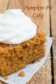 best 25 pumpkin pie cake ideas on pumpkin recipes