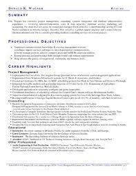 resume summary exles marketing resume summary exles 2017 online resume builder