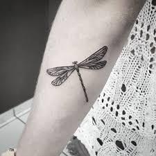 668 best dragonflies ladybugs u0026 hummingbirds images on pinterest