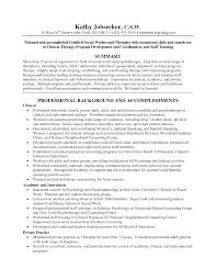 Resume Job History Format by Resume Example Of A Work Resume