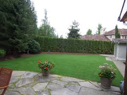Alternative To Grass In Backyard by Seattle U0026 Bellevue Artificial Turf U0026 Lawn Installation Synthetic