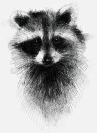 pencil drawings of animals pencil drawing by bethany grace