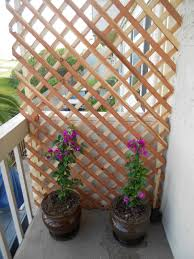 create a beautiful private balcony by using some lattice wood and