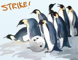bowling for penguins