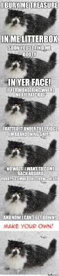 Make Your Own Cat Meme - pirate cat memes best collection of funny pirate cat pictures
