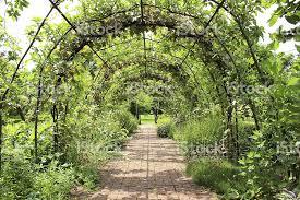 Grape Vine Pergola by Metal Pergola Garden Archway Tunnel Blockpaved Brick Pathway Grape