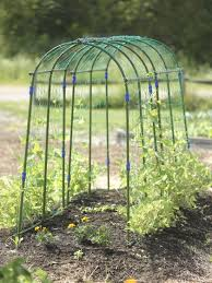 pea trellis pea tunnel sweat pea trellis gardener u0027s supply