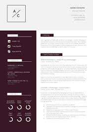Resume Samples Editor by 13 Slick And Highly Professional Cv Templates Guru