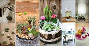 amazing terrarium decor ideas for your indoor garden