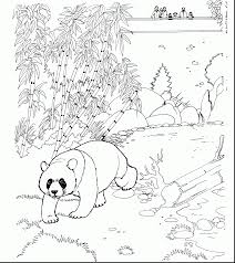 stunning spring coloring pages with panda bear coloring pages