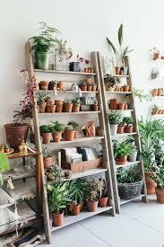 Diy Ladder Shelf Shelves Tutorials by Object Of Desire Wooden Ladder Bookshelf For Plants Ladder