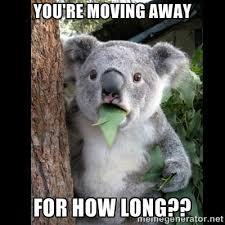 Moving Away Meme - tdk moving home facebook