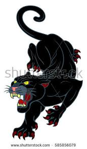 black panther stock images royalty free images u0026 vectors