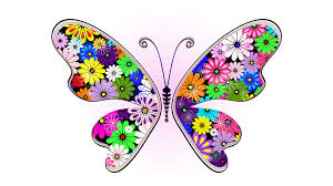 abstract colorful butterfly wallpapers and backgrounds