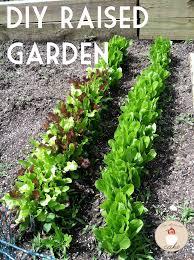 diy raised vegetable garden let them eat cake
