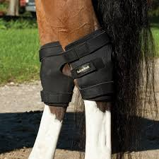 magnetic u0026 heat therapy horse health care products from smartpak