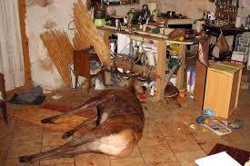 cerf cuisine chasse à courre s était achevée dans leur cuisine