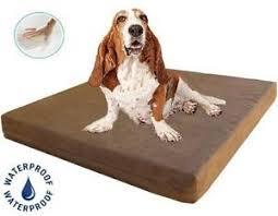 Kong Dog Beds Large Dog Bed Ebay