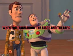 Buzz Lightyear Everywhere Meme - x x everywhere latest memes imgflip