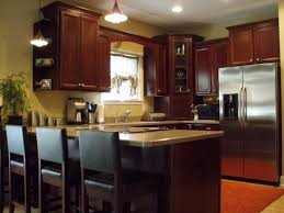 Small U Shaped Kitchen Designs L Shaped Kitchen Designs With Snack Bar Basic Kitchen Shapes