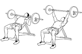 Incline Bench Muscle Group 45 Minute Chest Building Workout Program U2022 Just Fitness