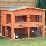 rabbit hutches outdoor u0026 indoor rabbit u0026 bunny hutches petco