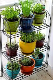 Herb Container Garden - garden design garden design with garden florists gourmet potted