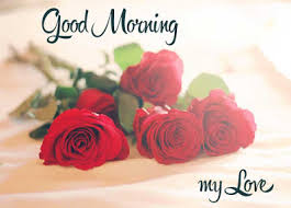 flowers for my sweet morning messages with flower images http www