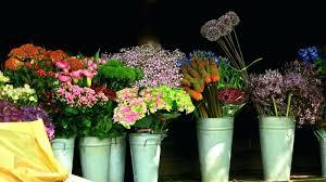 florist columbus ohio florists columbus ohio flowers 43228 florist 43214 techbrainiac info