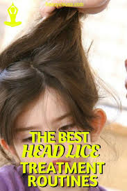 the 25 best natural lice treatment ideas on pinterest head lice