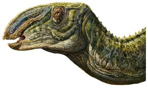 dinosaurs dave hone u0027s archosaur musings