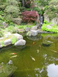 triyae com u003d koi pond in small backyard various design