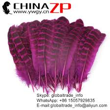 compare prices on pheasant wings feathers online shopping buy low