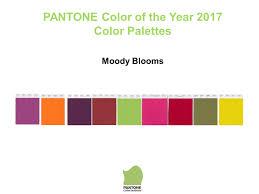2017 pantone related keywords suggestions 2017 pantone long tail