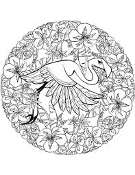 flamingo mandala coloring free printable coloring pages