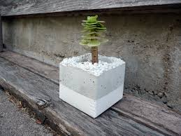 Concrete Planters Stunning Accessories For Garden Landscaping Decoration With Modern