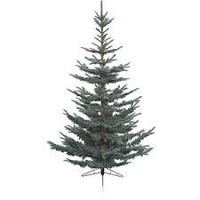 tree a tree